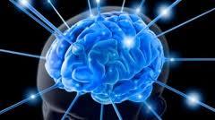 L'esercizio fisico aiuta la mente